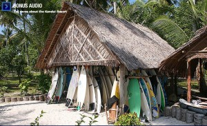 Just like my quiver... minus about 25 boards