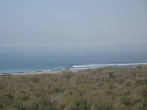 Quick shot of Trestles from the freeway... It kinda hard to tell from here but it was sooo fun!!