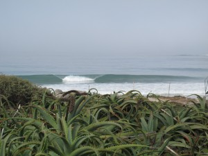 The beachbreaks have been super clean over the last few days...